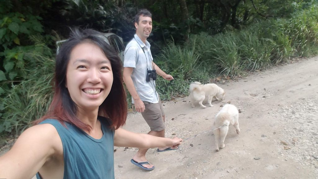 work exchange walking dogs in kuroshima japan 在黑島上打工換宿溜狗