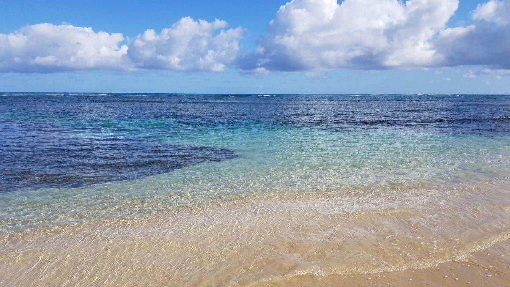 Playa Las Ballenas Dominican Republi Samana Peninsula 多明尼加山美納半島推薦海灘天堂百椰娜海灘