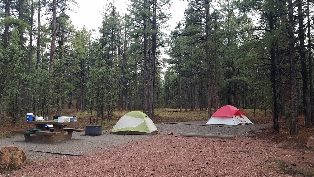 Quaking Aspen National Forest Campground 國家森林露營地數位遊牧邊公路旅行邊工作生活